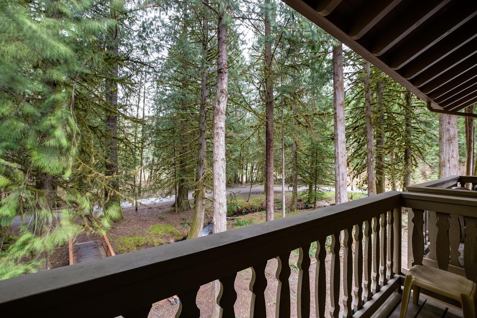 Apartment Mt  Baker Lodging Condo  56     FIREPLACE  INEXPENSIVE  KITCHENETTE  WIFI  SLEEPS-4  photo 31816883