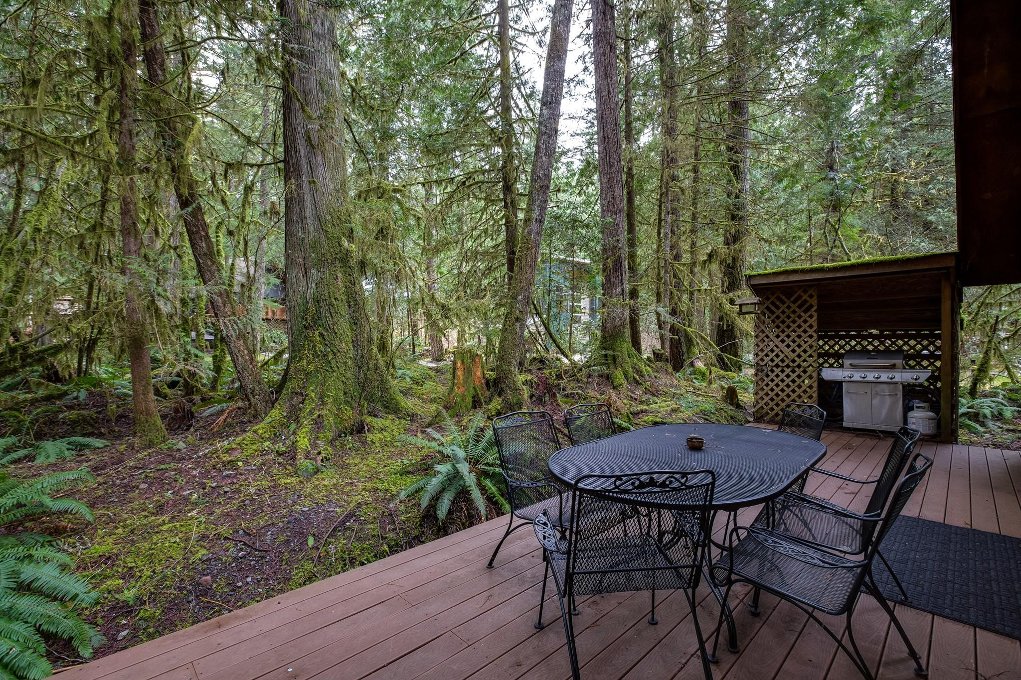 Apartment Mt  Baker Lodging Cabin 40  ndash  HOT TUB  BBQ  PET FRIENDLY  WIFI  SLEEPS 8  photo 30889380