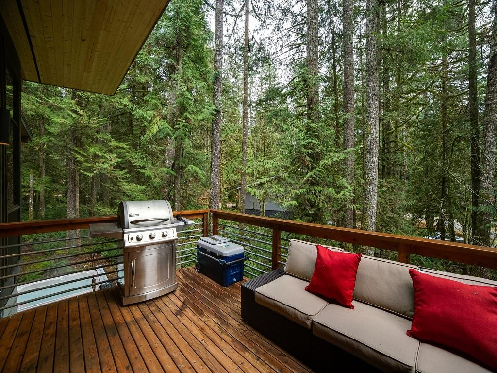Mt. Baker Lodging Cabin #42 –  HOT TUB, PETS OK, BBQ, W/D, WIFI, SLEEPS 4! photo 3870613