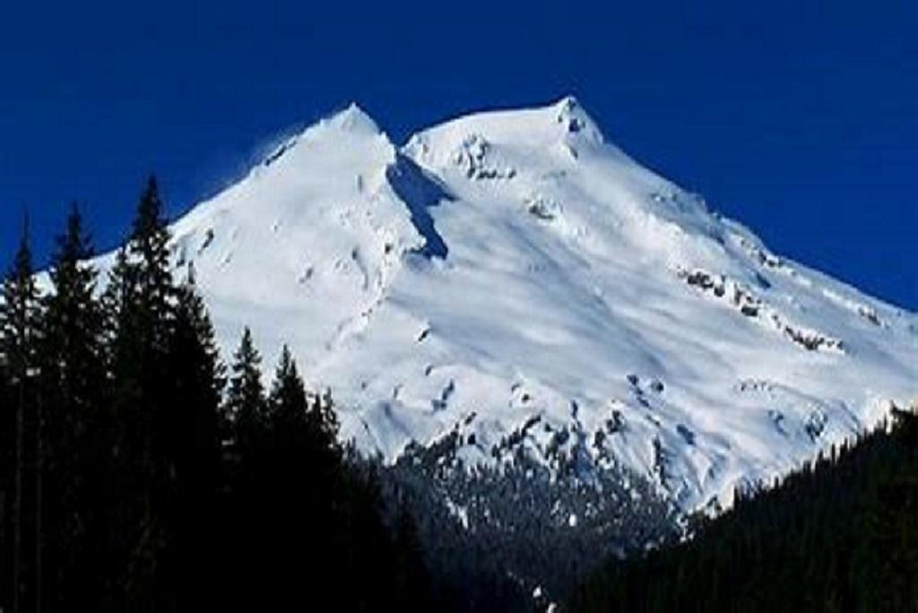 Apartment Mt  Baker Lodging Ensuite  15  ndash  MT VIEWS  HOT TUB  PETS OK  SLEEPS 6  photo 31816943