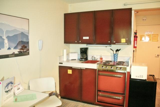 Mt. Baker Lodging Condo #88 – INEXPENSIVE, ECONOMICAL, KITCHENETTE, SLEEPS-2! photo 60893