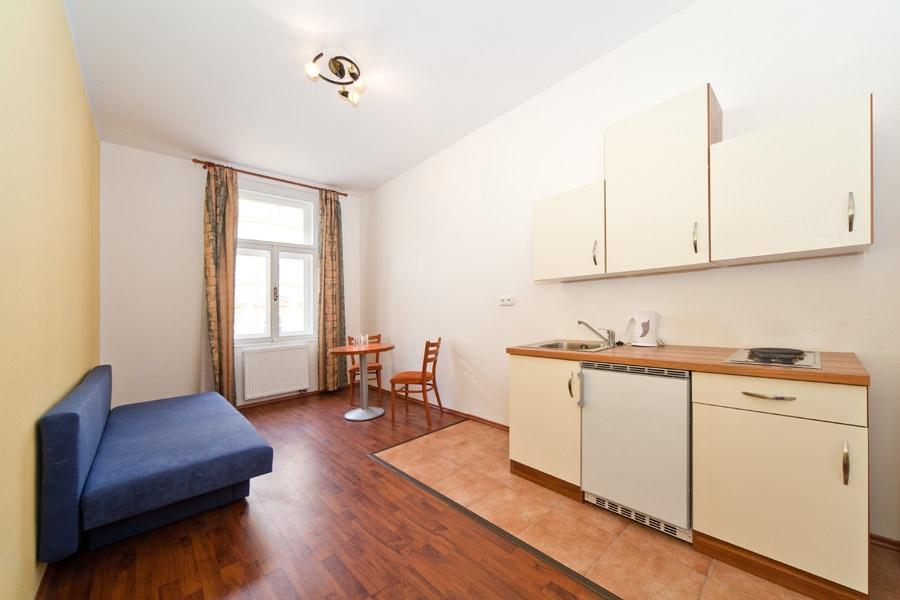 Apartment Spacious Apartment in the City center of Prague photo 31595354